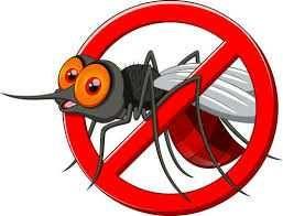 Opryski komary kleszcze