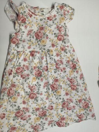 Newbie 110 sukienka
