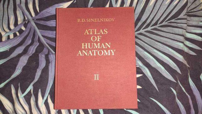 Atlas of Human Anatomy - R.D. Sinelnikov - tom II 2
