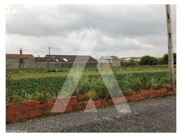 Terreno Urbano em Fermentelos