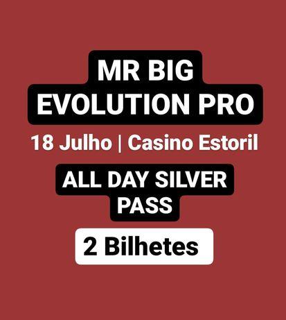 MR BIG evolution Pro IFBB - 18 julho
