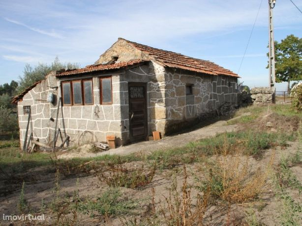 Terreno Rústico em Andorinha, Oliveira do Hospital