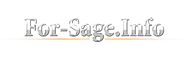 Предлагаем начать собственный бизнес удаленно в компании For-sage.info