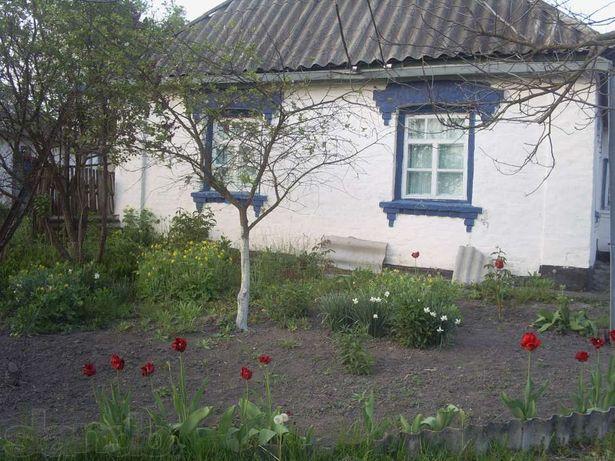 Продаю свой дом в Киевской обл. (с. Бовкун)