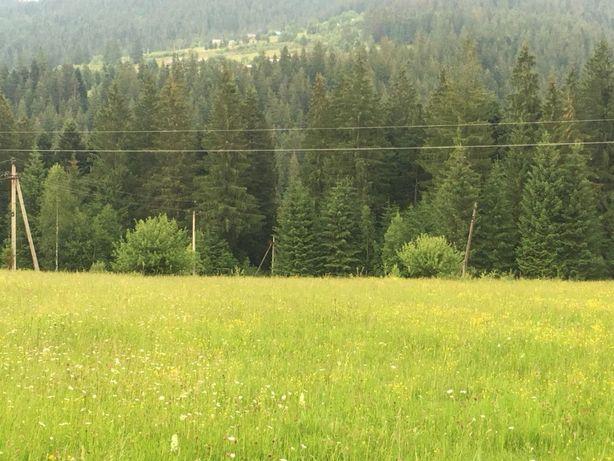 Продам земельну ділянку в с.Микуличин - 0,29 га