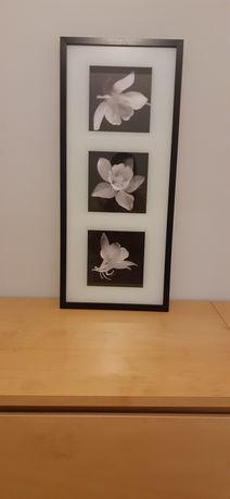 Obraz z kwiatami Ikea