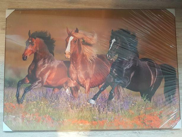 Obraz konie las