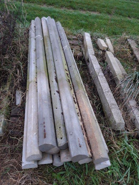 Kołki słupki do malin cementowe wysokość około 2,5 m bardzo mocne Bilsko - image 1