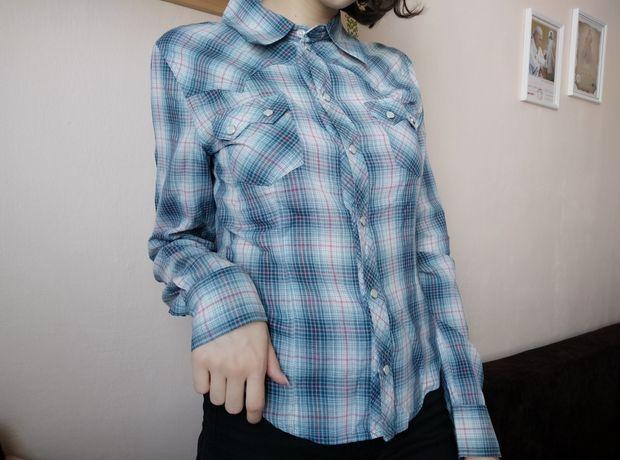 Koszula w drobną niebiesko-różową kratę HM