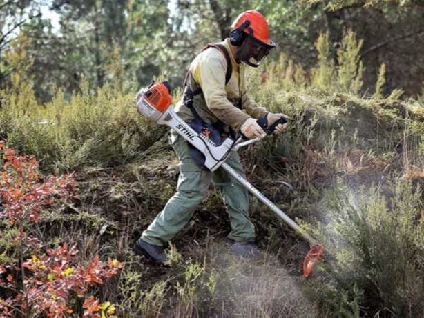 Limpeza e desmatizacao de terrenos