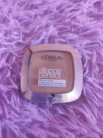 Пудра Лореаль L'Oréal alliance perfect
