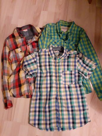 Koszule 152 chłopak