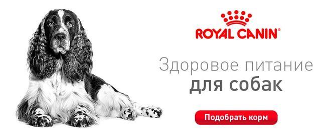 Корм для собак Royal Canin/Роял канин/Роял канін Франція. СУПЕР-ЦІНА.