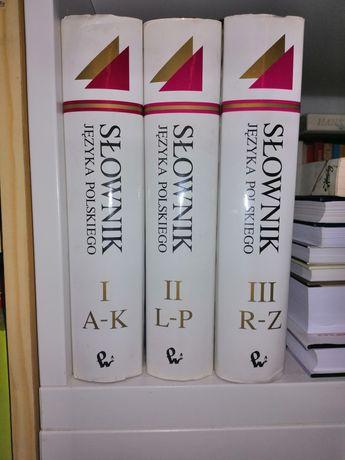 Slownik jezyka polskiego - trzy tomy PWN