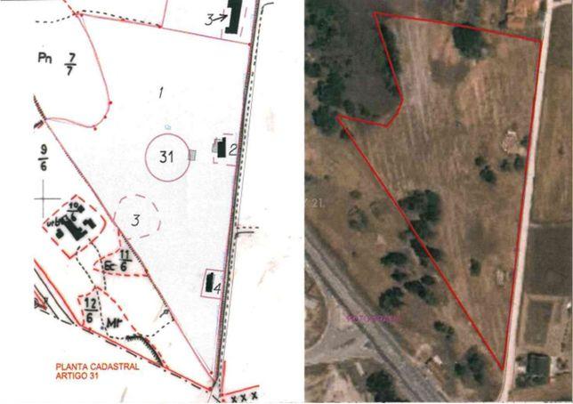 Quinta na Brejoeira com 16.034m2 , duas casas ruina