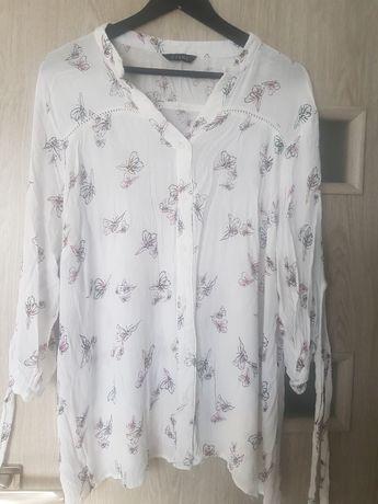 Koszula w motyle