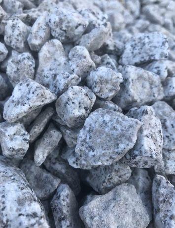 Kamien ozdobny dalmatynczyk