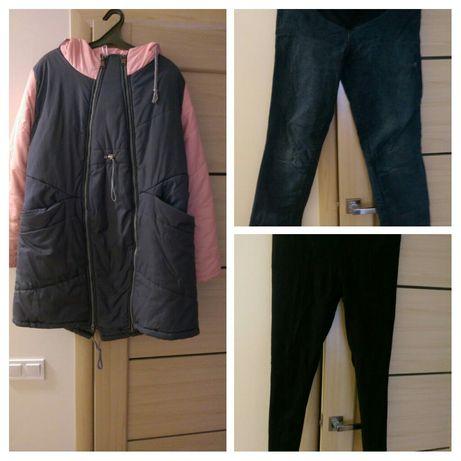 Куртка пальто; Штани; Лосіни легінси для вагітних