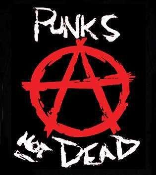 Присоединяемся к панк-компании