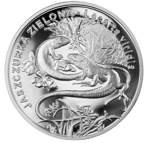Srebrna moneta JASZCZURKA ZIELONA 20zł 2009 kapsel i prospekt srebro