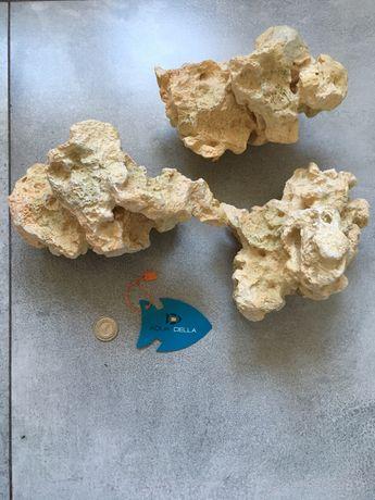 Ozdoby do akwarium aqua della