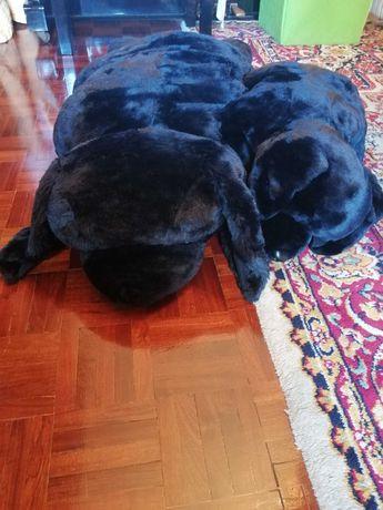 Peluche cão gigante e filhote / Banheira de bebé