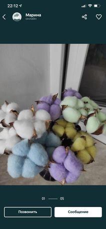 Хлопок сухоцвет Натуральный белый тонированный  Лотос