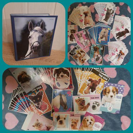 Segregator kolekcja karteczki pieski konie kotki