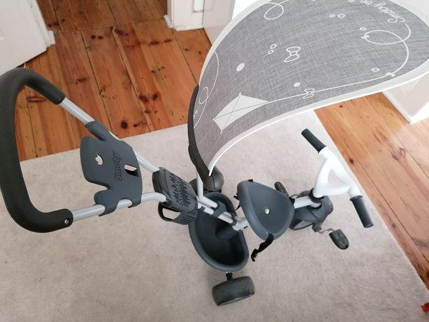 Triciclo de idades entre 10 meses e 4 anos