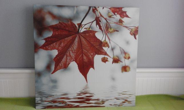Obraz z liściem na tle wody