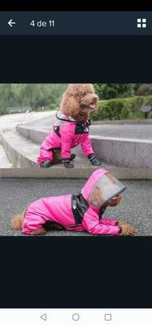 Capa de chuva para cão