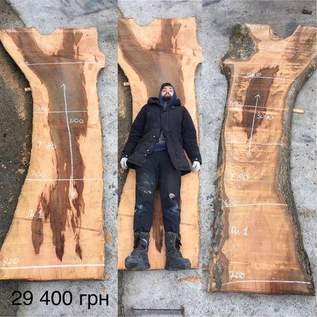 Продольный спил дерева Платана больших размеров, Слэб Платана Николаев