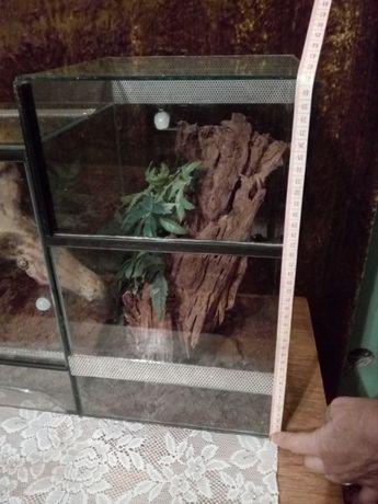 Terrarium szklane 25x25x40 cm gilotyna (pająk nadrzewny)