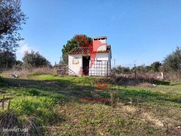 Pequena quinta em Cabeção- Mora