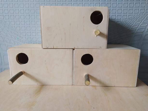 Budki lęgowe dla papug falistych