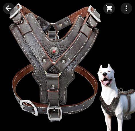 Продам новую кожанную шлейку для средней собаки