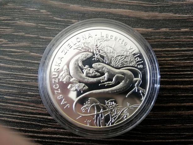 Moneta 20 zł Jaszczurka zielona srebro