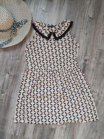 Sukienka letnia w jamniki
