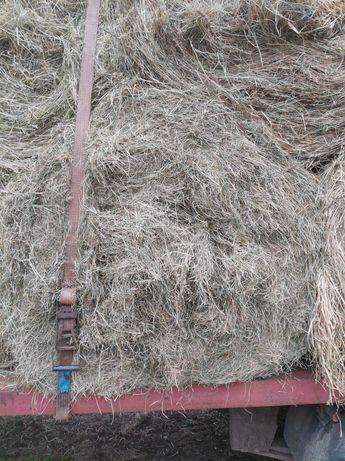sprzedam siano suche ze stodoły realne zdj transport w cenie