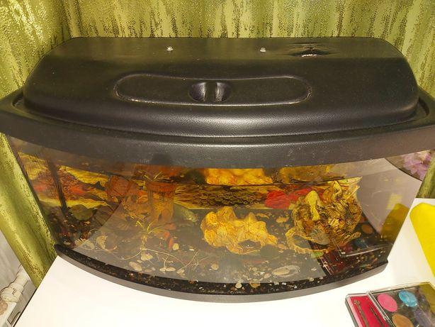 Продам аквариум+рыбки+замки+фильтр