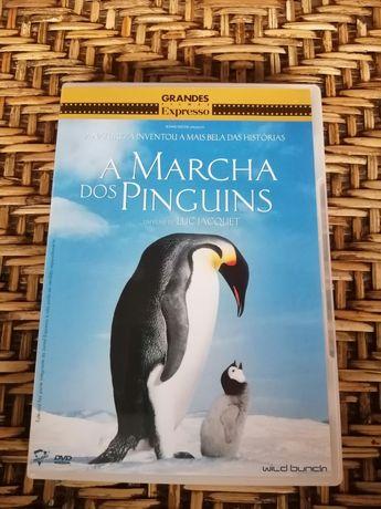 DVD A Marcha dos Pinguins, de Luc Jacquet