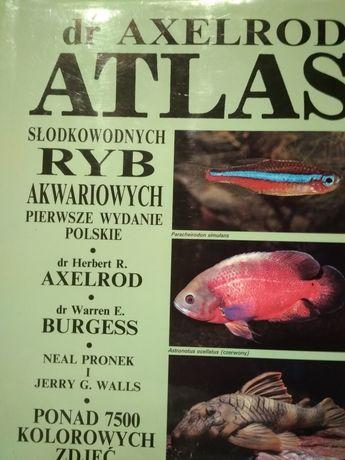 Dr Axelrod atlas ryb słodkowodnych