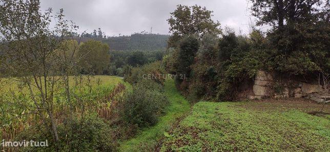 Terreno agrícola com 2750 m2 perto da margem do Rio Sousa em Sobreira,