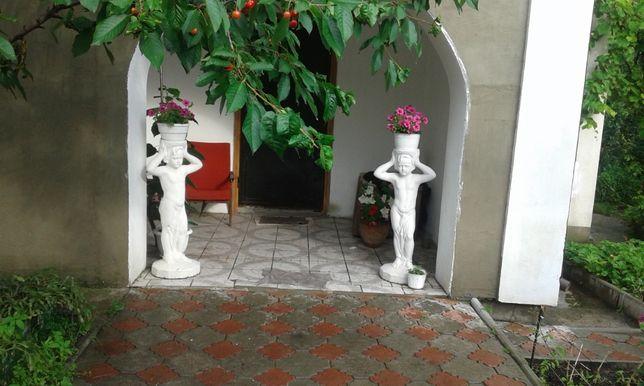 Сдам дом-дачу возле леса в Белогородке Киево-Святошинский