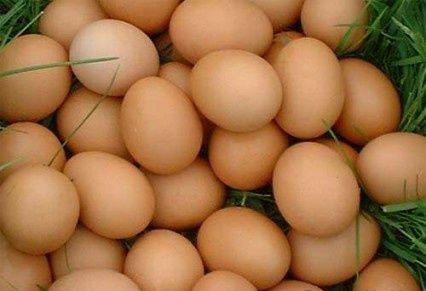Домашние яйца,  куриные домашние яйца