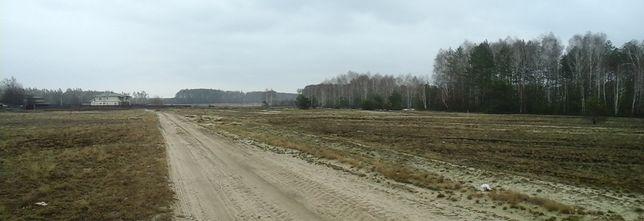 Земельный участок для строительства дома в с. Новое Залесье