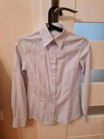 Koszula damska massimo dutti r. 36 S błękitna