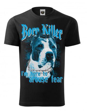 Pies Niebieski ostry jak Pitbull S,M,L,XL,XXL,XXXL