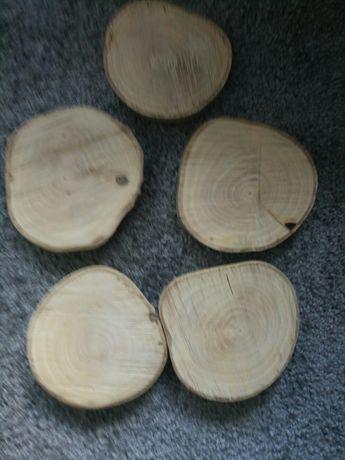 Plastry drzewa