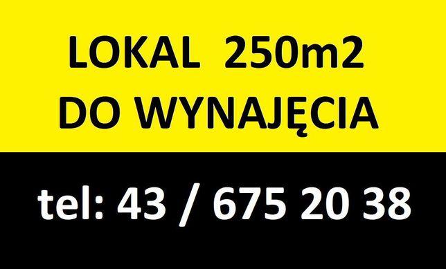 Lokal 250m2 do wynajęcia Łask Każda działalność